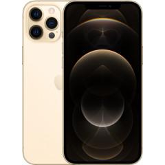 Apple iPhone 12 Pro Max 256Gb (Gold) MGDE3