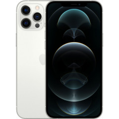 Apple iPhone 12 Pro Max 256Gb (Silver) MGDD3